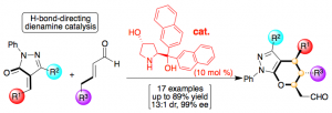 Fig. 9 – H-Bond-Directing Organocatalyst for Enantioselective [4+2] Cycloadditions via Dienamine Catalysis.