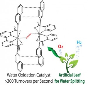 A molecular ruthenium catalyst with water-oxidation activity comparable to that of photosystem II