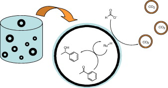 Aqueous asymmetric transfer hydrogenation using modular hydrophobic aminoalcohols