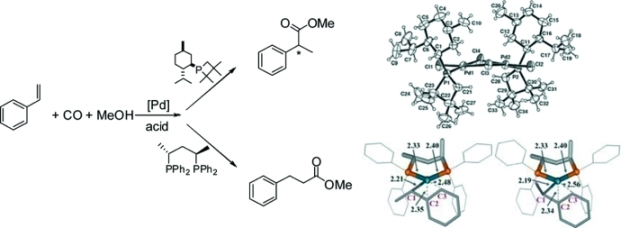 HP-NMR study of the Pd-catalyzed methoxycarbonylation of styrene using monodentate and bidentate phosphane-modified systems