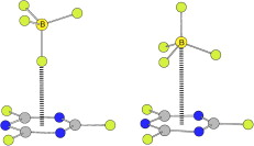 MP2 study of anion–pi complexes of trifluoro-s-triazine with tetrahedral and octahedral anions
