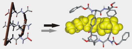 Synthesis and binding studies of two new macrocyclic receptors for the stereoselective recognition of dipeptides