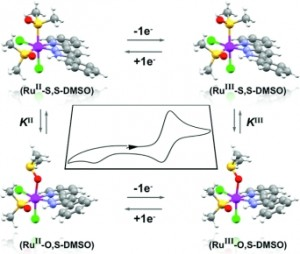 Synthesis, characterization, reactivity, and linkage isomerization of Ru(Cl)2(L)(DMSO)2 complexes