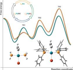 Transition metal catalysis by Density Functional Theory and Density Functional Theory/Molecular Mechanics