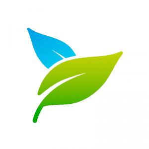 art-pho-800px-notxt-nobg