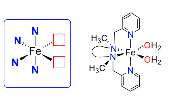 Example of ruthenium and iron complexes studied.