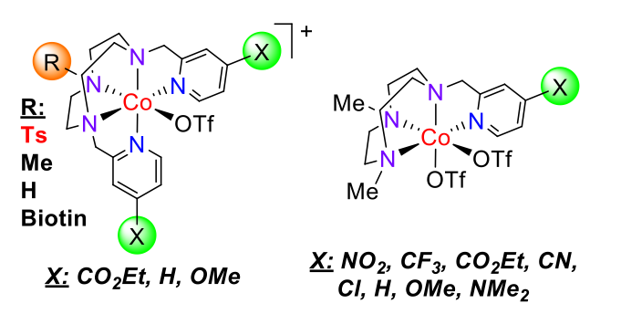 Fig.5. Cobalt aminopyridine complexes active in electro- and photocatalytic proton and CO2 reduction.