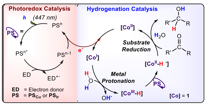 Fig. 7 – Exemple of ketone reduction using light-driven cobalt-copper dual catalysis.