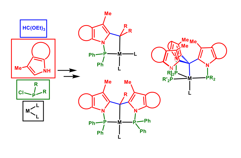 Fig. 9 – Modular approach for the synthesis of P-C, P-C-P and CP3 metal complexes.