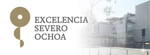 ICIQ: Severo Ochoa Center of Excellence