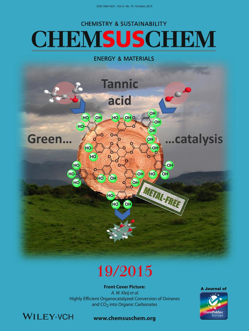 15 ChemSusChem Kleij cover