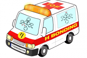 Llobet ambulance H bonding rescue