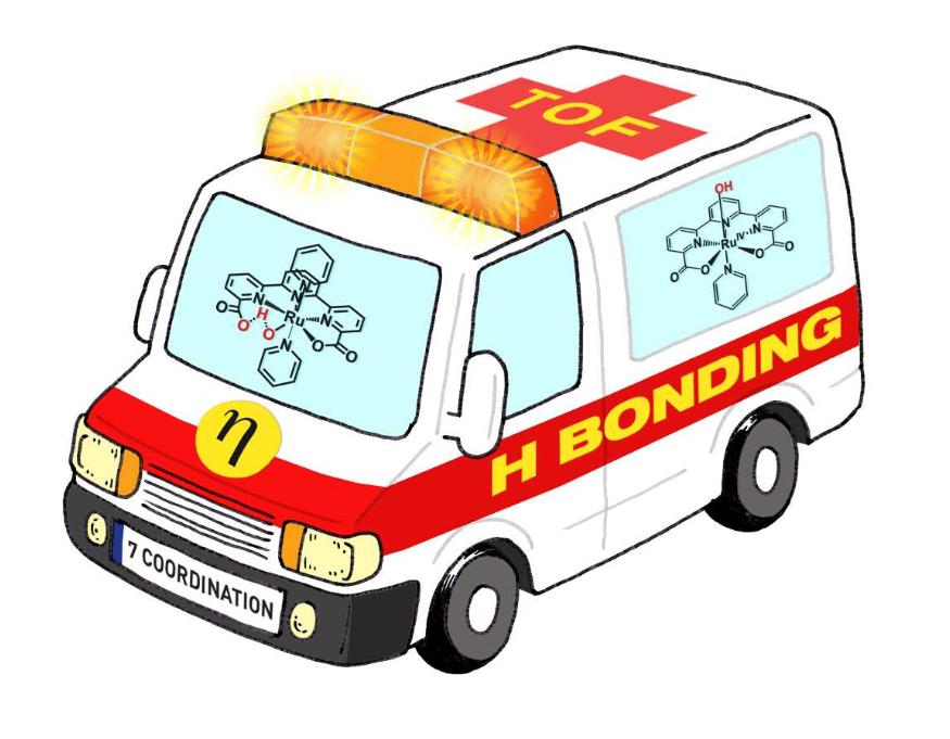 Llobet ambulance H bonding rescue
