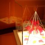 JLL Science Museum3