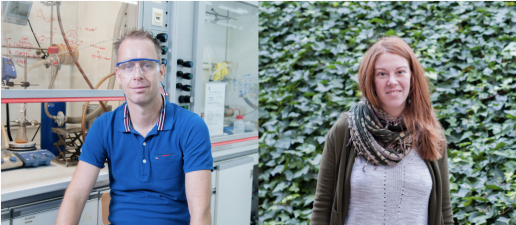 Arjan W. Kleij & Mónica H. Pérez-Temprano have been awarded by the RSEQ.
