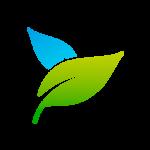 fotosintesi artificial