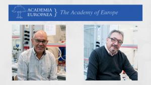 Academia Europeae Miquel Antonio